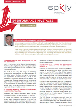 Expert opinion - E-performance