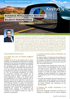 Avis d'expert - Business Intelligence 2012-2013